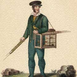 Bird catcher in the area surrounding Florence