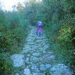 The ancient paving of the Valibona road