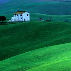 Landscape in the Volterra area