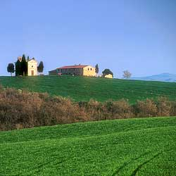 Chiesina in Val d'Orcia